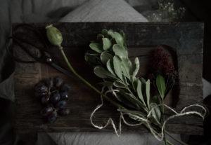 Copyright Maria Fynsk Norup